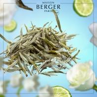 Biała herbata wkład do lampy zapachowej 500 ml - Maison Berger 115361