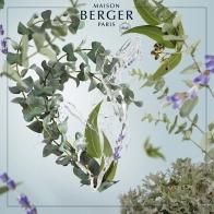 Eukaliptus wkład do lampy zapachowej 500 ml - Maison Berger 115361