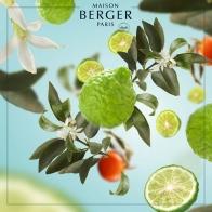 Bergamotka wkład do lampy zapachowej 1000 ml - Maison Berger