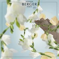 Leśna mgła wkład do lampy zapachowej 500 ml - Maison Berger