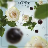 Oceaniczna Bryza - wkład do lampy zapachowej 500 ml - Maison Berger