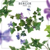 Lolita - wkład do lampy zapachowej 500 ml - Maison Berger