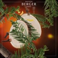 Cedr - wkład do lampy zapachowej 500 ml - Maison Berger