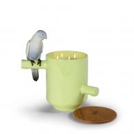 Świeca Zapach prerii Parrot Party 27 cm - Lladro
